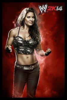 WWE 2K14 artwork roster Superstars divas 25.09 (39)