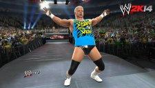 WWE-2K14_juillet_screenshot (2)