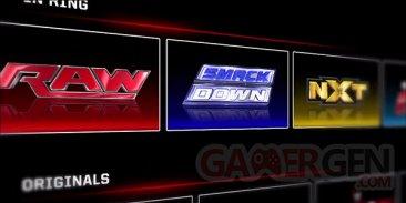 WWE Network (2)