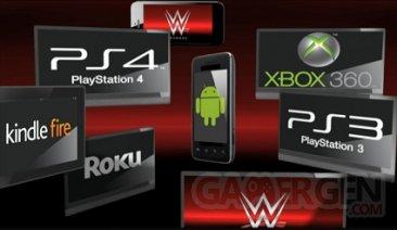 WWE Network (3)
