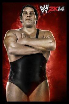 WWE2K14_12-08-2013_art (2)