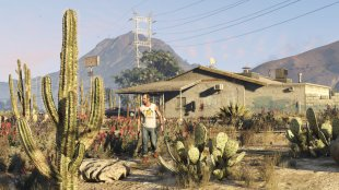 gta v screenshot pc  (8)