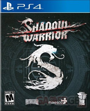Shadow Warrior jaquette (1)