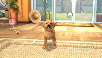 PlayStation Vita Pets 03.04 (4)