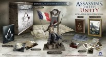 Assassin-Creed-Unity-Collector-Uplay