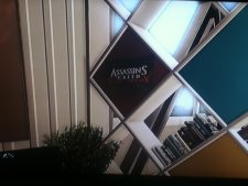 Assassin's-Creed-Rising-Phoenix-Black-Flag_03-11-2013_pic (1)