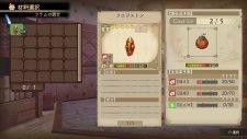 Atelier-Shallie-Alchemists-of-the-Dusk-Sea_13-04-2014_screenshot-9