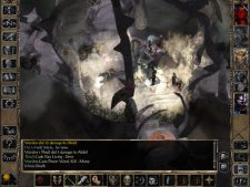 baldurs-gate-ii-2-enhanced-edition-ipad-screenshot- (3).