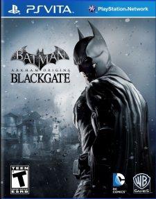 batman-arkham-origins-blackgate-cover-boxart-jaquette-psvita