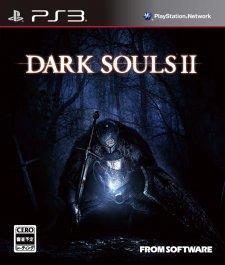 Dark-Souls-II_02-11-2013_jaquette-1