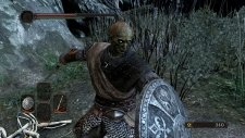 Dark Souls II 17.01.2014  (10)