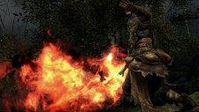Dark Souls II 17.01.2014  (17)