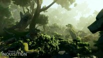 Dragon-Age-Inquisition_14-06-2014_screenshot-12
