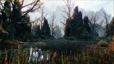 Dragon Age Inquisition 22.04.2014  (1)
