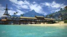 Final Fantasy XIV A Realm Reborn 12.02.2014  (27)