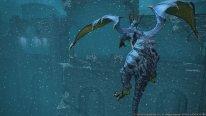 Final Fantasy XIV A Realm Reborn 24 06 2014 screenshot 19