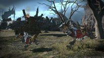 Final-Fantasy-XIV-A-Realm-Reborn-Defenders-of-Eorzea_14-06-2014_screenshot (2)