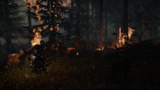 Forest-SpreadingFire-noscale