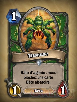 hearthstone-malediction-naxxramas-carte-chasseur-tisseuse