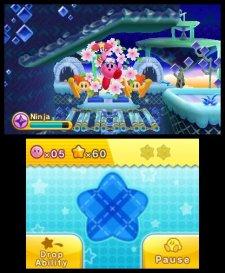 Kirby Triple Deluxe 29.03.2014  (11)