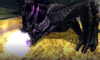 Monster-Hunter-4-Ultimate_05-06-2014_screenshot (6)