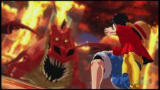 One Piece Unlimited World Red 02.04.2014  (3)