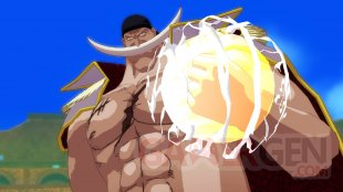 One Piece Unlimited World Red 12.05.2014  (31)