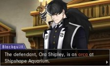 Phoenix-Wright-Ace-Attorney-Dual-Destinies-Turnabout-Reclaim_14-11-2013_screenshot-3