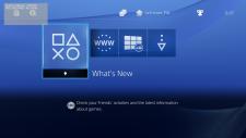 PlayStation 4 ps4 debug interface 22.04.2014  (6)