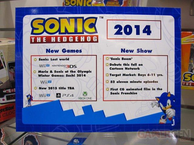 Sonic-Nuremberg_01-02-2014_pic