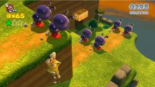 super_mario_3d_world-5