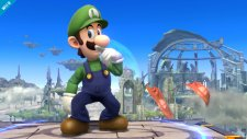 Super-Smash-Bros_07-08-2013_screenshot-5