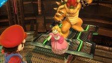 Super Smash Bros 12.09.2013 (5)