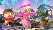 Super Smash Bros 12.09.2013 (6)
