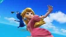 Super Smash Bros 12.09.2013 (7)