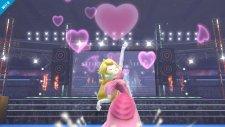 Super Smash Bros 12.09.2013 (9)