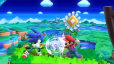 Super Smash Bros 29.10.2013 (5)