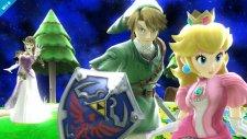 Super Smash Bros Zelda 26.12.2013 (10)