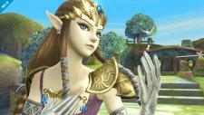 Super Smash Bros Zelda 26.12.2013 (5)