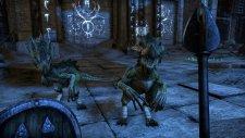 The-Elder-Scrolls-Online_11-12-2013_screenshot-2