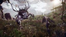 The Witcher 3 Wild Hunt 001