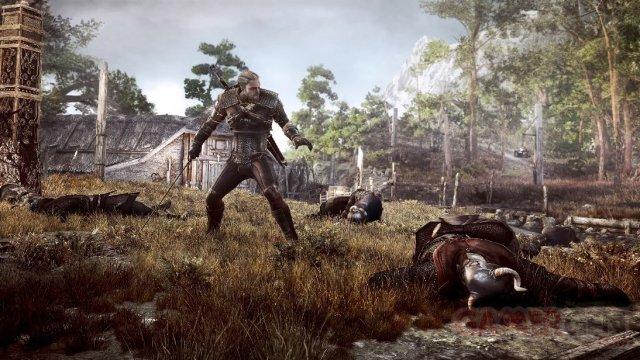 The Witcher 3 Wild Hunt 006