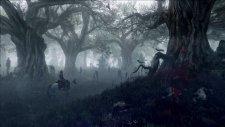 The Witcher 3 Wild Hunt 007