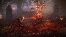 The Witcher 3 Wild Hunt 009