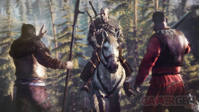 The Witcher 3 Wild Hunt 011