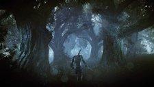 The Witcher 3 Wild Hunt 013