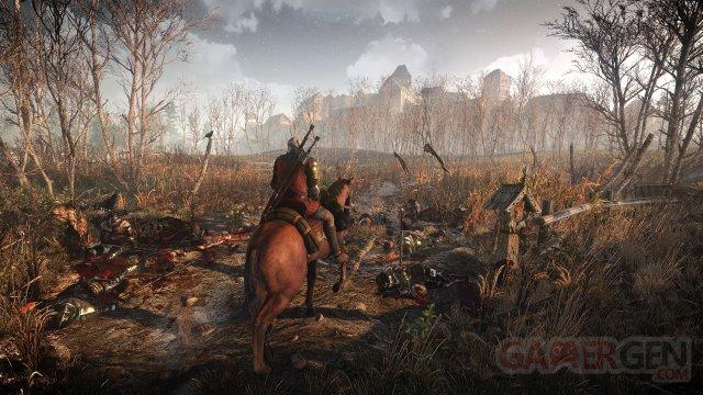 The-Witcher-3-Wild-Hunt_28-01-2014_screenshot-1