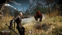 The-Witcher-3-Wild-Hunt-Traque-Sauvage_14-06-2014_screenshot-14