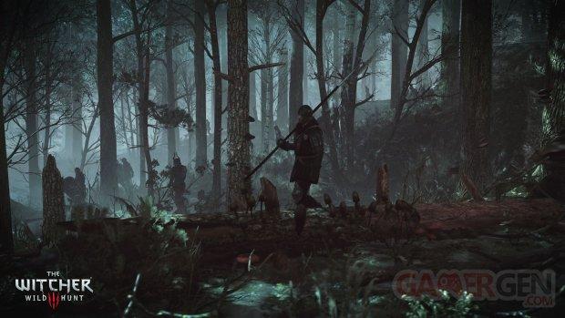 The Witcher 3 Wild Hunt Traque Sauvage 14 06 2014 screenshot 17