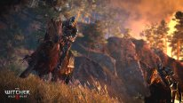 The-Witcher-3-Wild-Hunt-Traque-Sauvage_14-06-2014_screenshot-18